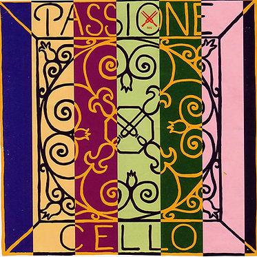 Passione - Pirastro