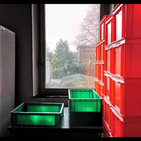 Grüne Kisten einundvierzig
