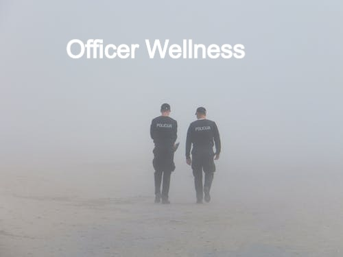 police-fog-seaside-38442_edited