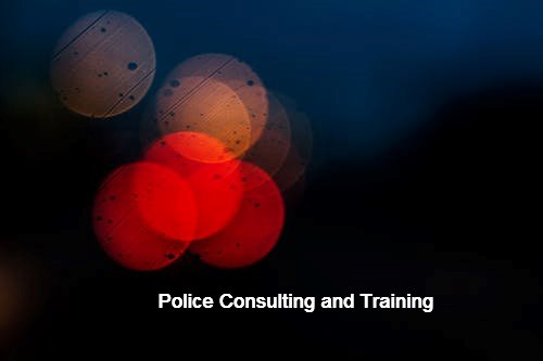 Consulting/Training