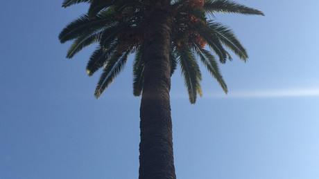 Balad'in Nice ....