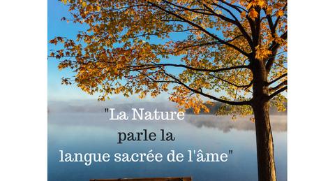 """""""L'âme agit"""" (la magie) des mots..."""
