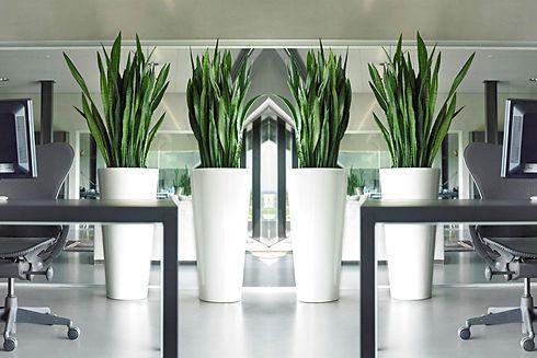 Photo de plantes artificiel dans un bureau proposée par Végétal Tendance