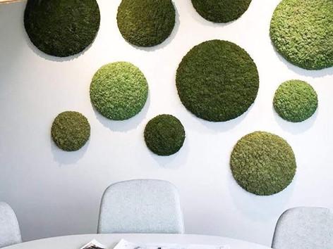 Plant circles