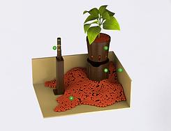 Shéma d'un système de plante naturel en hydroculture proposé par Végétal Tendance en Suisse