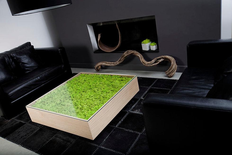 Photo d'une table basse végétale conçue par Végétal tendance en Suisse