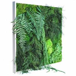 Tableau végétal stabilisé (9)