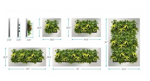 Végétal Tendance taille tableaux naturel