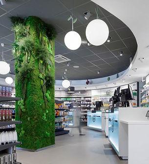 Photo d'habillage végétal d'un poteau dans un magasin