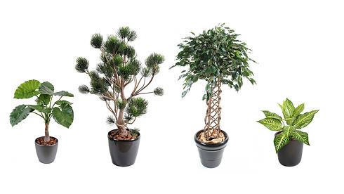 Arbres et plantes artificiels Végétal Te