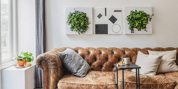 Photo d'une tableau végétal naturel vivant dans un salon en Suisse