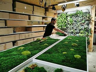 Photo de la conception d'un tableau végétalisé par l'équipe Végétal Tendance en Suisse