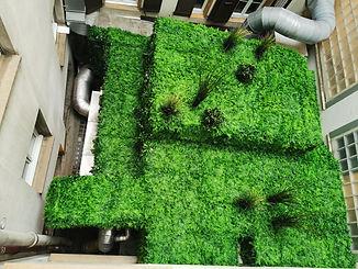 Photo après le projet d'habillage végétal d'une installation techniques