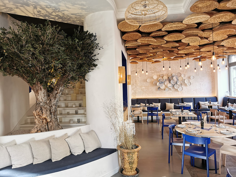 Olivier stabilisé restaurant