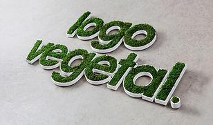 Photo d'un logo végétal proposée par Végétal tendance