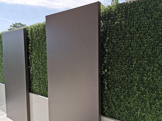 Photo d'une cloison végétale de séparation en extérieur d'une entreprise