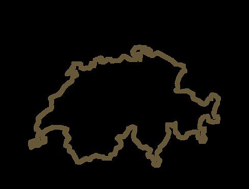 Carte de la suisse avec une épinge qui localise Végétal tendance