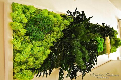 Tableau végétal stabilisé (118).jpg
