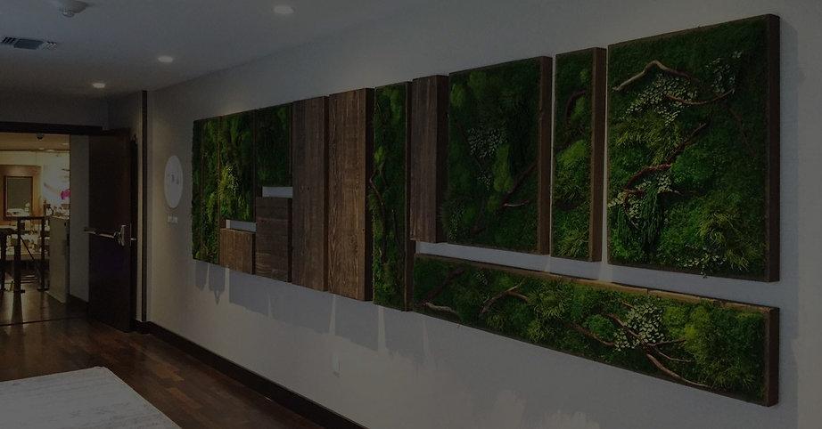 Photo d'un tableau végétal naturel stabilisé dans un couloir