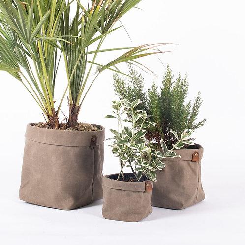 Planter Set - Waxed Canvas - Beige