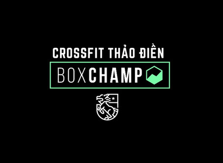 Getting the most from BoxChamp
