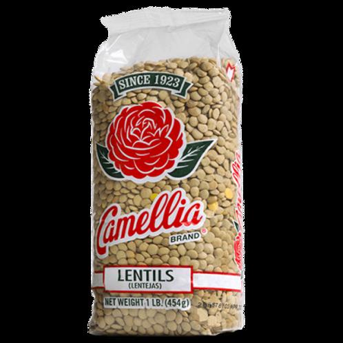 CAMELLIA LENTILS