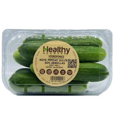 HEALTHY GROWERS MINI PEPINO DULCE S/SEMILLA 2
