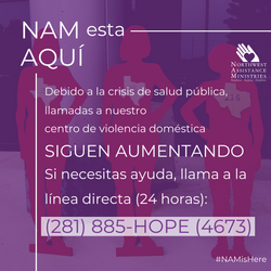 COVID - NAM IS HERE  DONATION ASK (3)