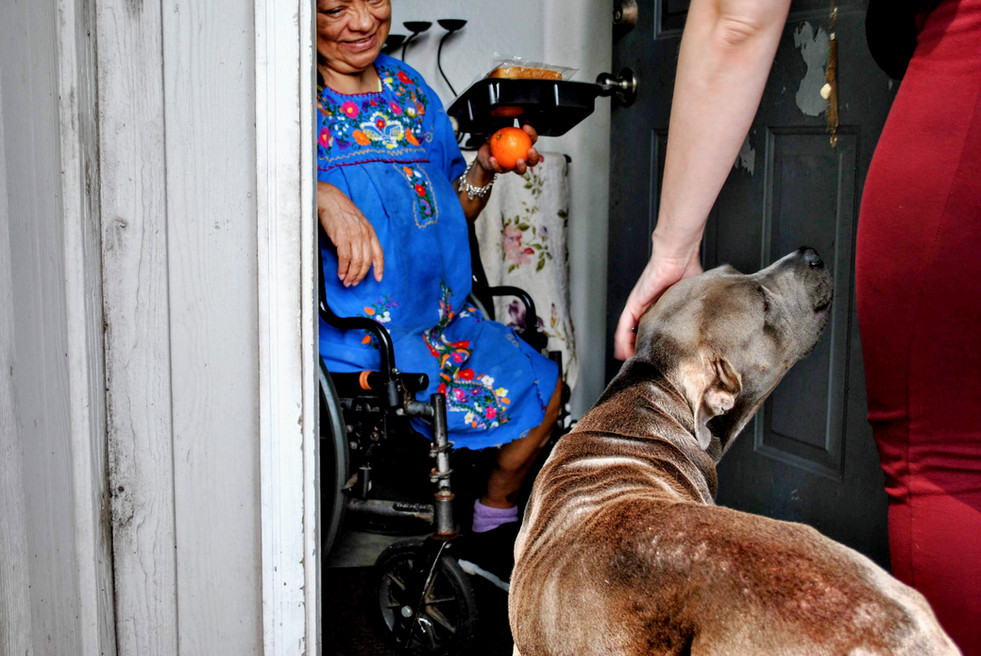 Meals On Wheels Delivery June 2020