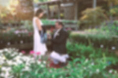 Houston Tx, Photography, Photographer, Wedding, Corporate, Film, Cinematography, Company, photo, video, photographer, photographers, videographer, videographers, professional, affordable, quince, quinceanera, engagement, bridal, shoot, wedding venue,