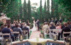 wedding in the trees re edit (1 of 1).jp
