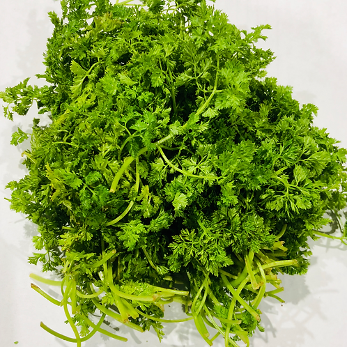Chervil (French parsley)