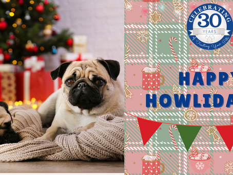 Happy Howlidays from Angelcare!