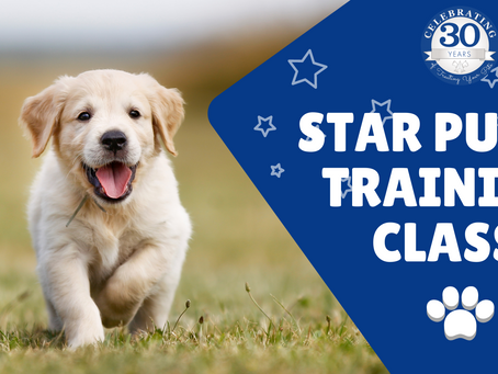 STAR Puppy Training Class