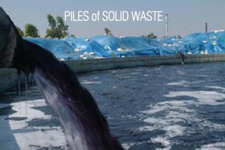 solid waste.jpg