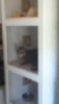cat condo_edited.jpg