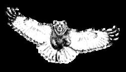 Bearhawk logo.png