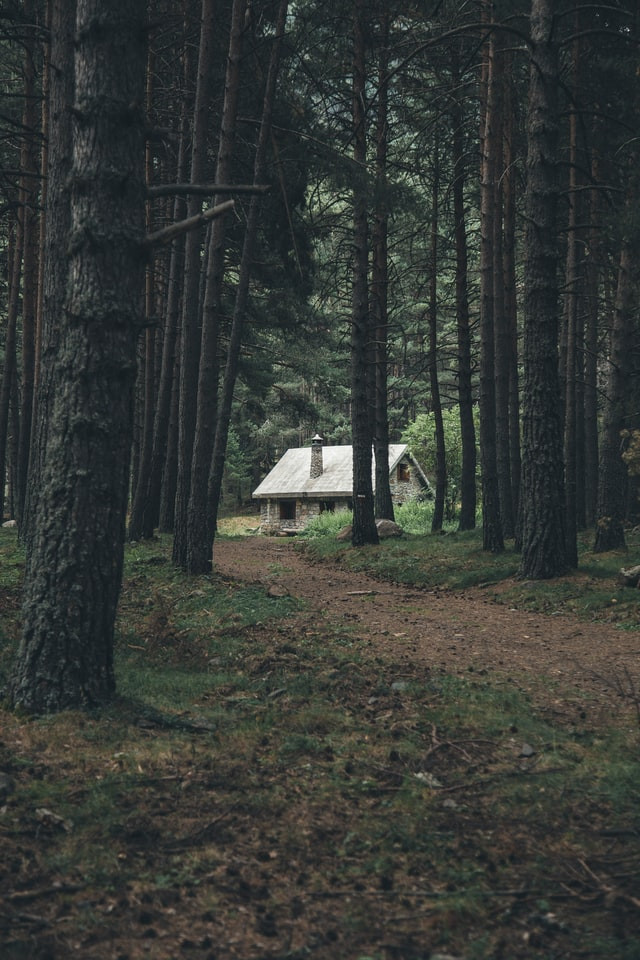 A white rock home serene and isolated in the deep forest. A dirt path leads to the little cottage.