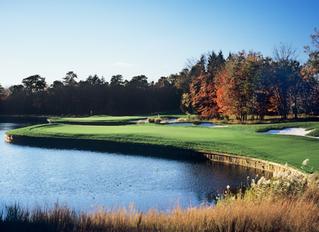 The Cottage Golf School