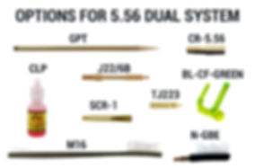 Options for 5.56 Dual System.jpg