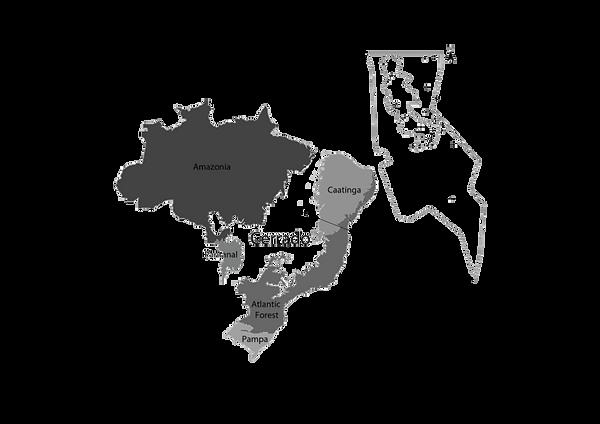 cerado map-01.png