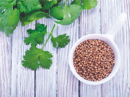 Know What You Eat | All about Coriander