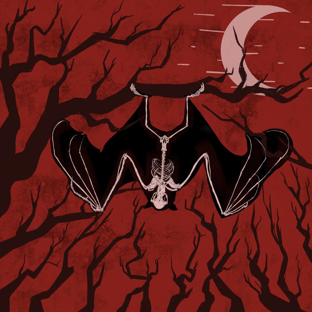 Bat Bones