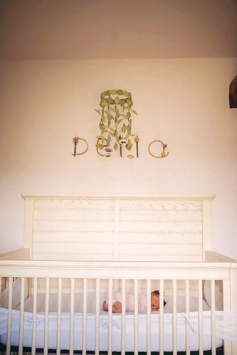 Della - Newborn