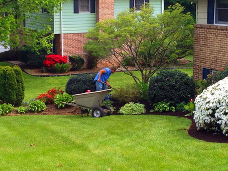 Get ready: Early Spring Landscaping Tips