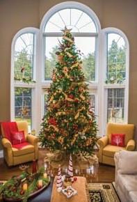 Fresh Christmas Tree Care