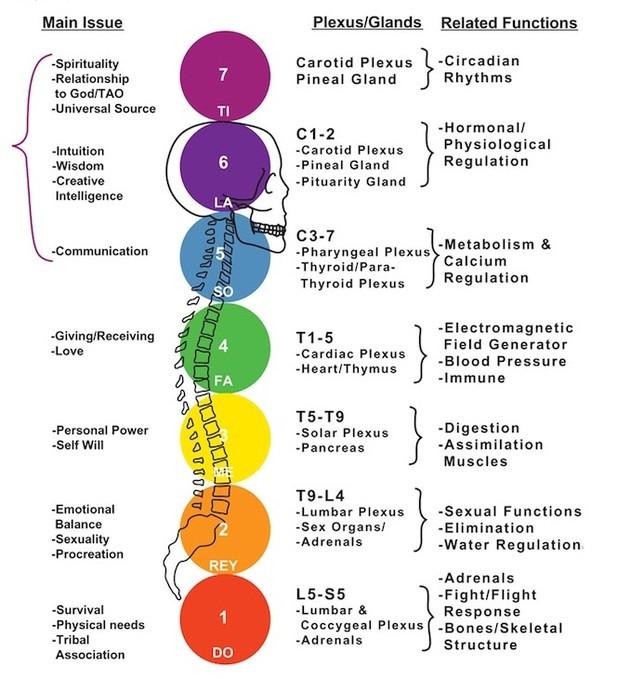 Balance Mind, Body, & Spirit