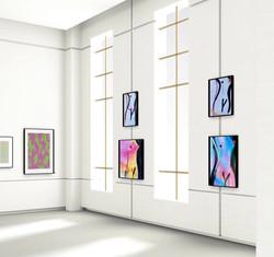 Zebra One Gallery