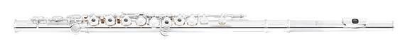 Di_Zhao_Flute_301_RCE-r.png