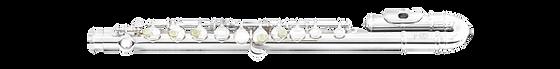 Di Zhao Flute MINIDI